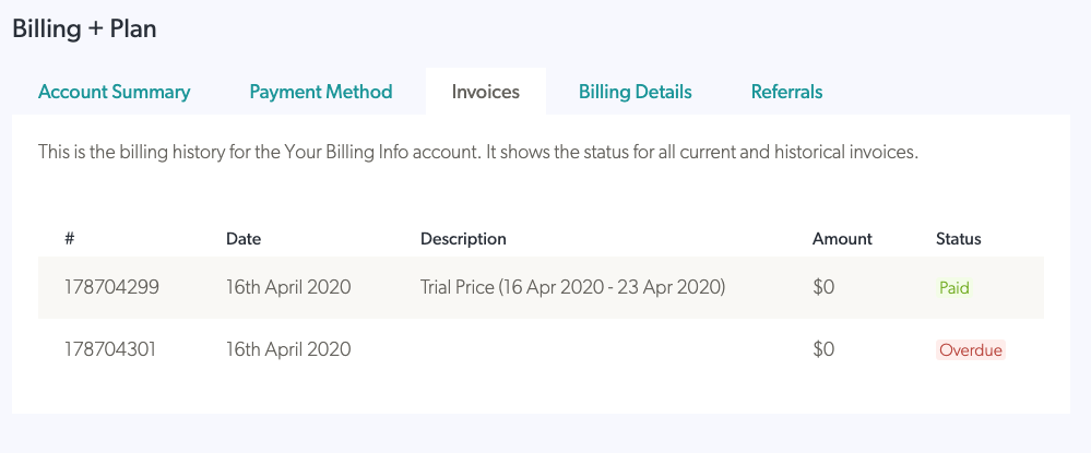 Invoice List Preview